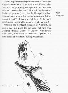 IMG bird book Black-eyed Warblers