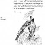 IMG bird book Cedar Waxwings