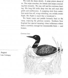 IMG bird book Common Loon