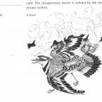 IMG bird book Killdeer