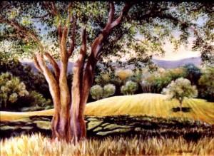 Len's Land